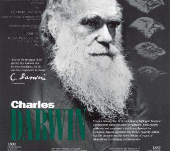 Evoluzione – Quindici risposte al nonsenso creazionista