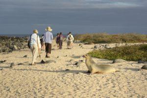 Avvicinarsi alle Galapagos con consapevolezza.