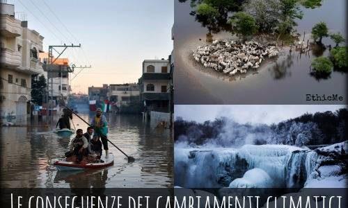 Gli effetti già evidenti del cambiamento climatico