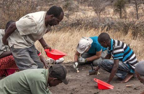 Tanzania – nuove orme scoperte a Laetoli cambiano lo scenario su Lucy e famiglia